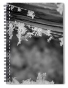 Ice Crystals Frozen In The River Spiral Notebook