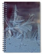 Ice Crystals Of Winter Spiral Notebook