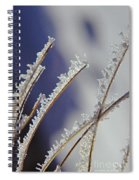 Ice Crystals On Fireweed Fairbanks  Alaska By Pat Hathaway 1969 Spiral Notebook
