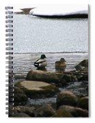 Ice Edges Spiral Notebook
