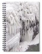 Ice Feathers 2 Spiral Notebook