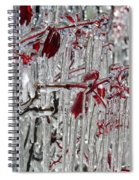 Ice Fence Spiral Notebook