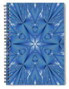 Ice Flower Fractal Spiral Notebook