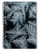 Ice-flowers Frost Pattern Tracery On Frost Window Spiral Notebook