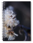 Ice Flowers Spiral Notebook