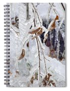 Ice Leaves Spiral Notebook