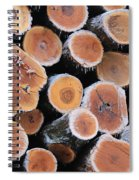Ice Logs Spiral Notebook
