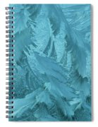 Ice Patterns Formed On Glass Spiral Notebook