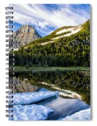 Ice Pool Spiral Notebook