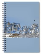 Ice Ships Spiral Notebook