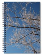 Ice Storm Branches Spiral Notebook