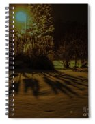 Ice Storm Night Spiral Notebook