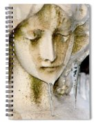 Ice Tear Drop Spiral Notebook
