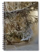 Ice Wall Spiral Notebook