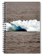 Iceburg With Passenger Spiral Notebook