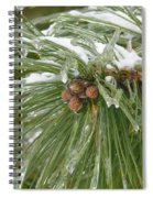 Iced Over Pine Cones Spiral Notebook