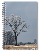 Iced Tree Spiral Notebook
