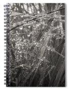Iceland Mist Black And White Spiral Notebook