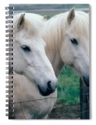 Icelandic Horses Spiral Notebook