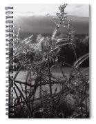 Icerise Spiral Notebook
