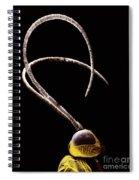 Ichneumon Wasp Antennae Spiral Notebook
