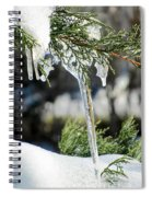 Icicles On Juniper Branch Spiral Notebook
