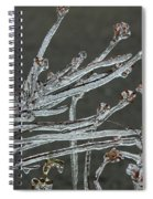 Icy Branch-7474 Spiral Notebook