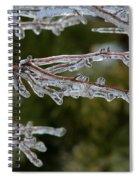 Icy Branch-7482 Spiral Notebook