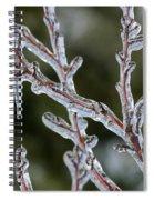 Icy Branch-7485 Spiral Notebook