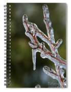 Icy Branch-7498 Spiral Notebook