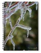 Icy Branch-7506 Spiral Notebook