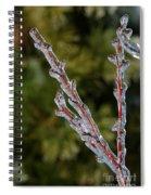 Icy Branch-7520 Spiral Notebook