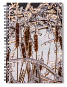 Icy Cattails Spiral Notebook