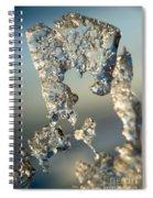 Icy Closeup Spiral Notebook