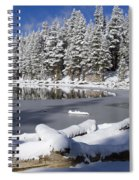 Icy Cold Spiral Notebook