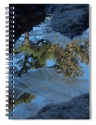 Icy Evergreen Reflection Spiral Notebook