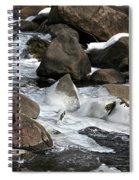 Icy Rapids Spiral Notebook