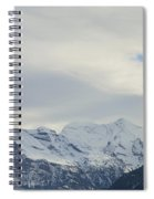 Icy View Spiral Notebook
