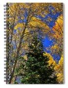 Idaho Autumn Colours Spiral Notebook
