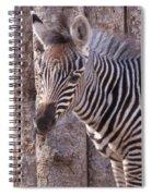 Idaho Falls - Tautphaus Park Zoo Spiral Notebook