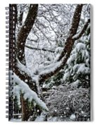 Idaho Spring Spiral Notebook