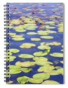 Idyllic Pond Spiral Notebook
