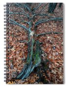 If A Tree Falls In The Woods Spiral Notebook