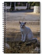 If Cats Could Talk Spiral Notebook