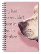 If Timmy Had A Pitbull Spiral Notebook