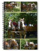 If You Love Belgian Horses Spiral Notebook