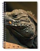 Iguana-7374 Spiral Notebook