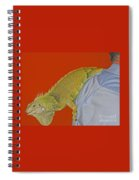Iguana By The Tail Spiral Notebook