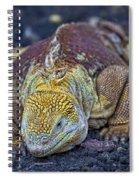 Iguana Spiral Notebook
