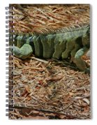 Iguana With A Smile Spiral Notebook